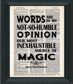 Words are, in my not-so-humble opinion, our most inexhaustible source of magic.